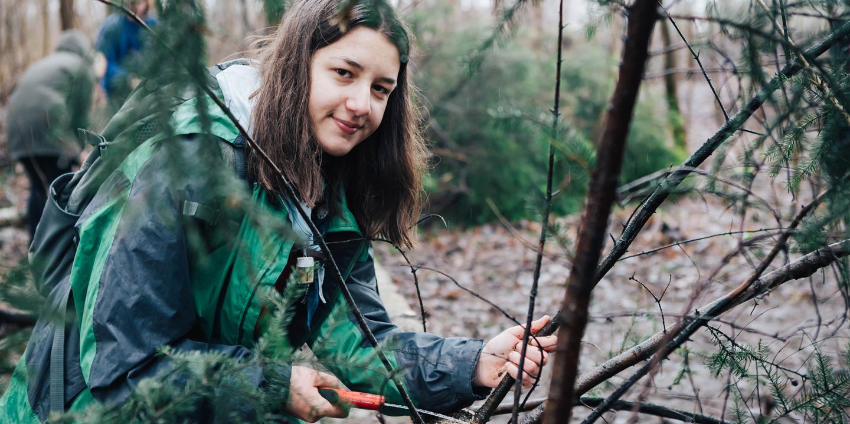 Jugendliche im Wald bei Holzarbeiten-